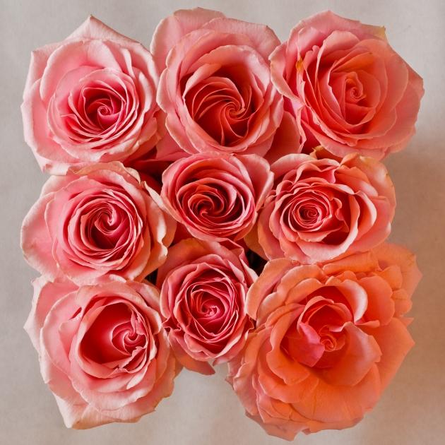 Valentines-