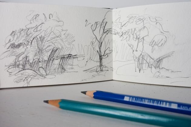 Trees-3-02448