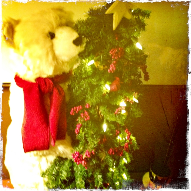 Christmas-bear-2574